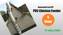 PVC-Chicken-Feeders