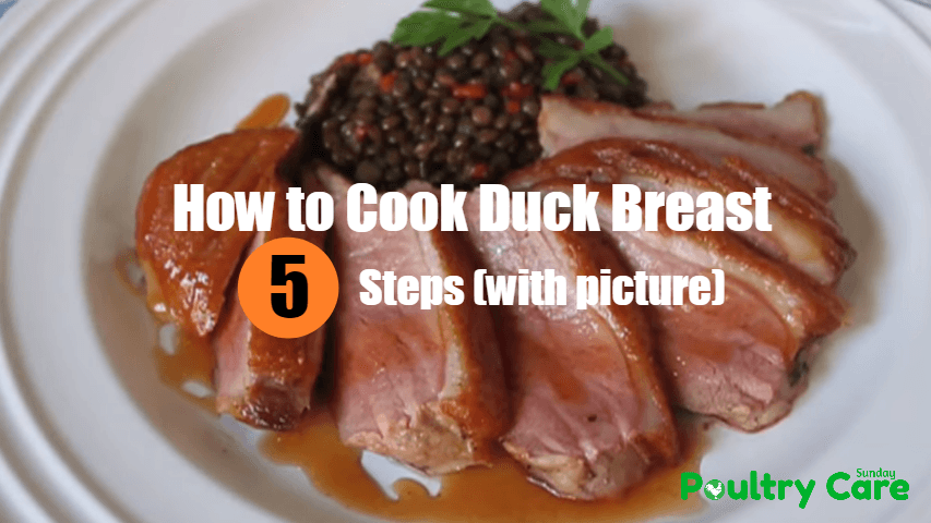 How-to-Cook-Duck-Breast