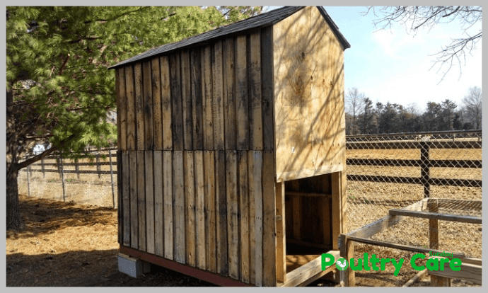 The-Shed-Chicken-Coop