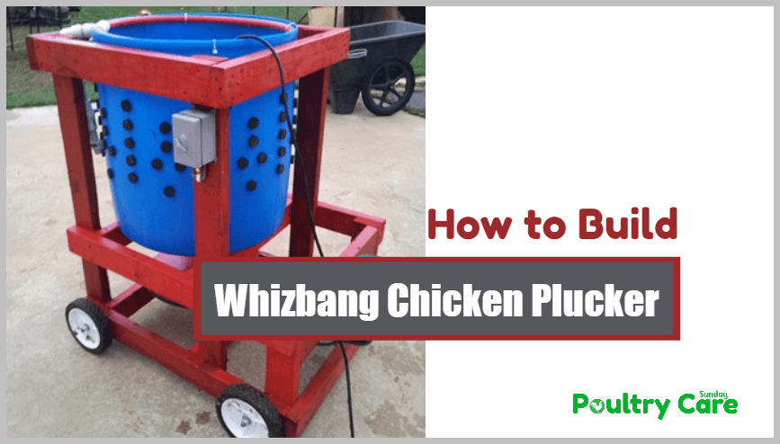 Whizbang-Chicken-Plucker