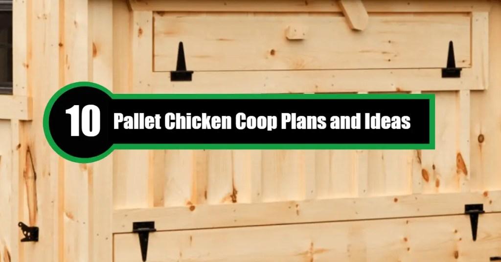 pallet-chicken-coop