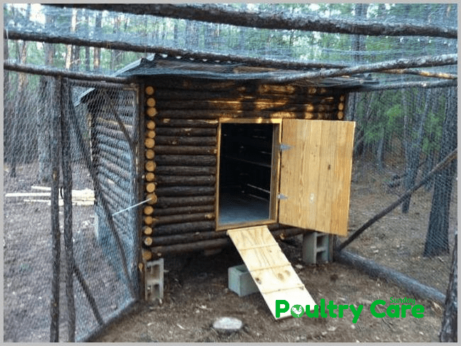 Romadfoxs Chicken Coop