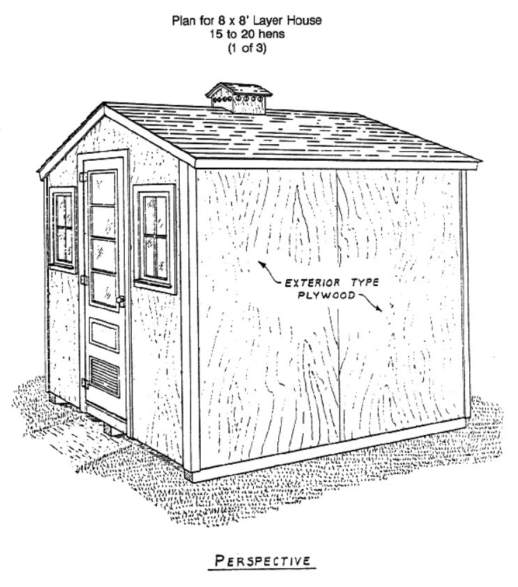 Small Chicken House
