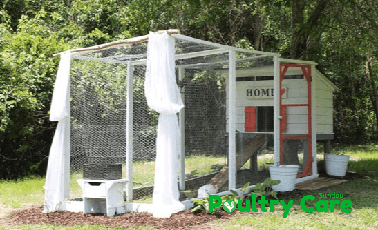 Pretty And Functional Chicken Coop