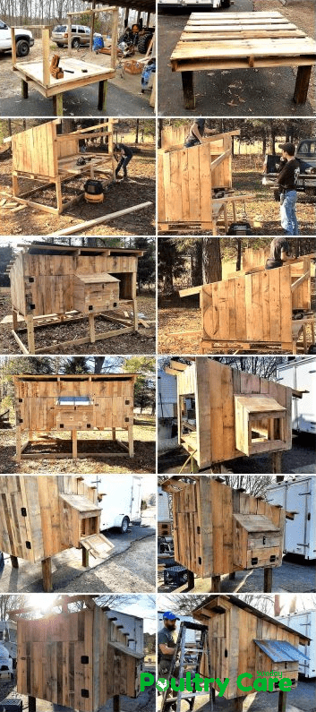 Raised Wooden Pallet Coop
