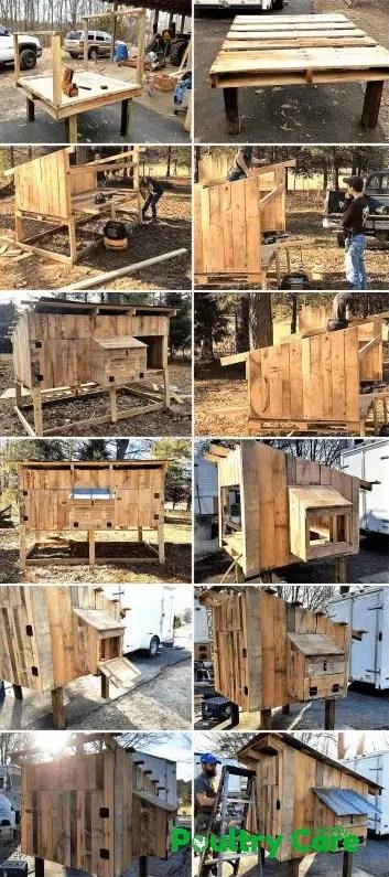 Raised Wooden Pallet Coop