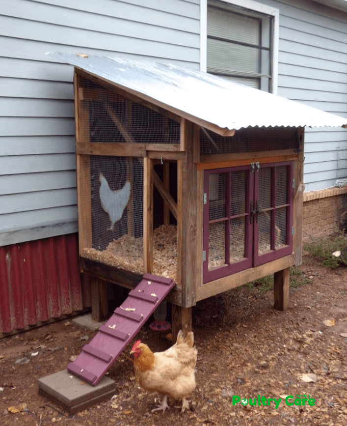 The Rustic Whimsical Coop