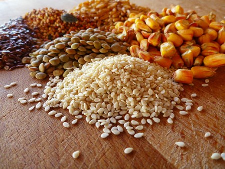Different Ingredients Go Into Poultry Feeds Formulation
