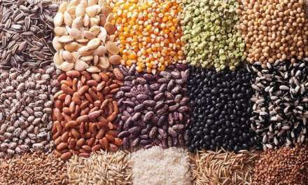 Chicken Feed Ingredients: What is in Your Chicken Feed?