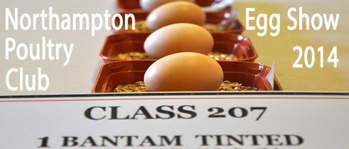 Northampton Egg Show 2014