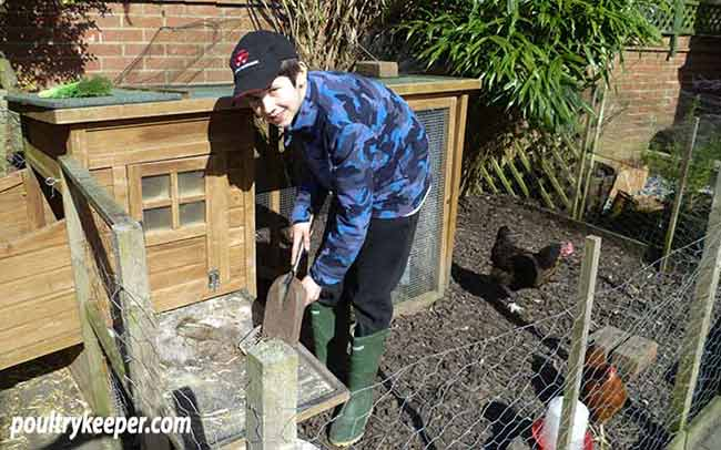 Cleaning Chicken Coop