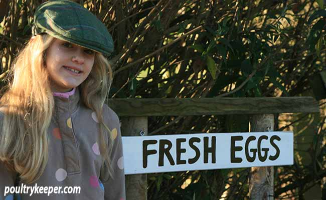 Selling Fresh Eggs