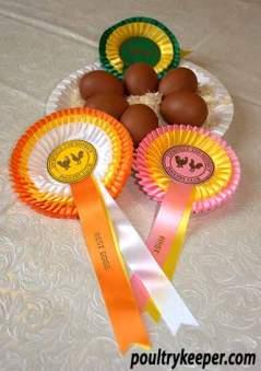 Welsummer Eggs
