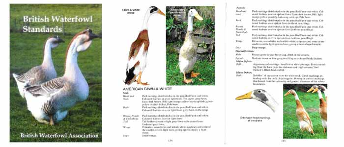 British Waterfowl Association Standards Review