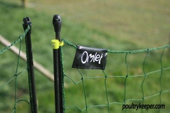 Top of Omlet Chicken Netting Kit