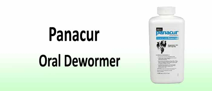 Panacur Wormer