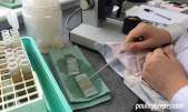 Worm Count Pipette