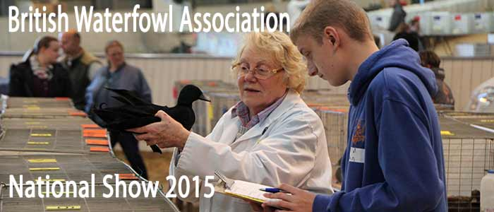 British Waterfowl Association National 2015