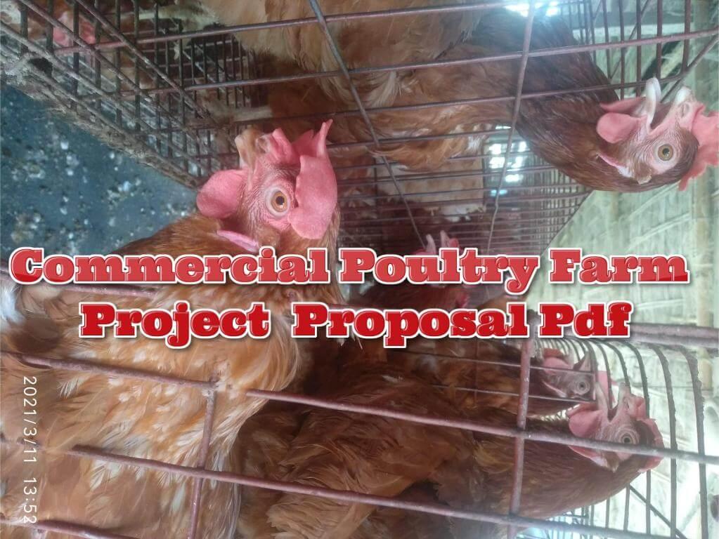 poultry farm project proposal pdf