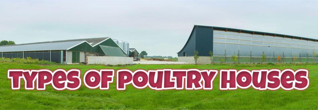Types of poultry house system