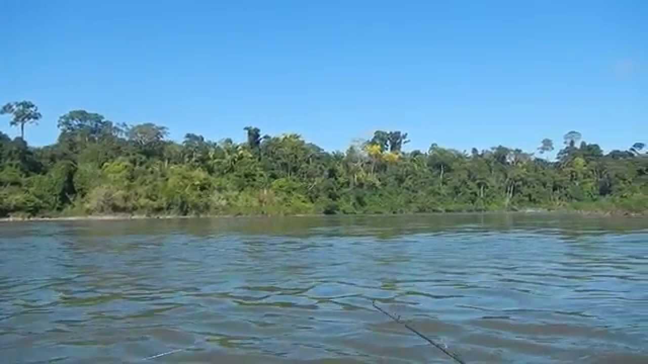 Tour Por El Río Roosevelt