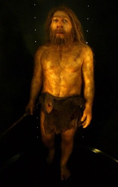 MEH_Neanderthal_Daynes
