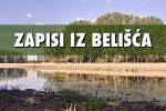 Zapisi iz Belišća: Povijest okoliša i današnji biseri prirode