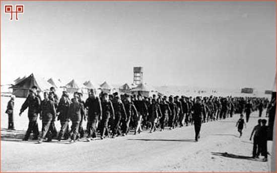 Marš kroz El Shatt