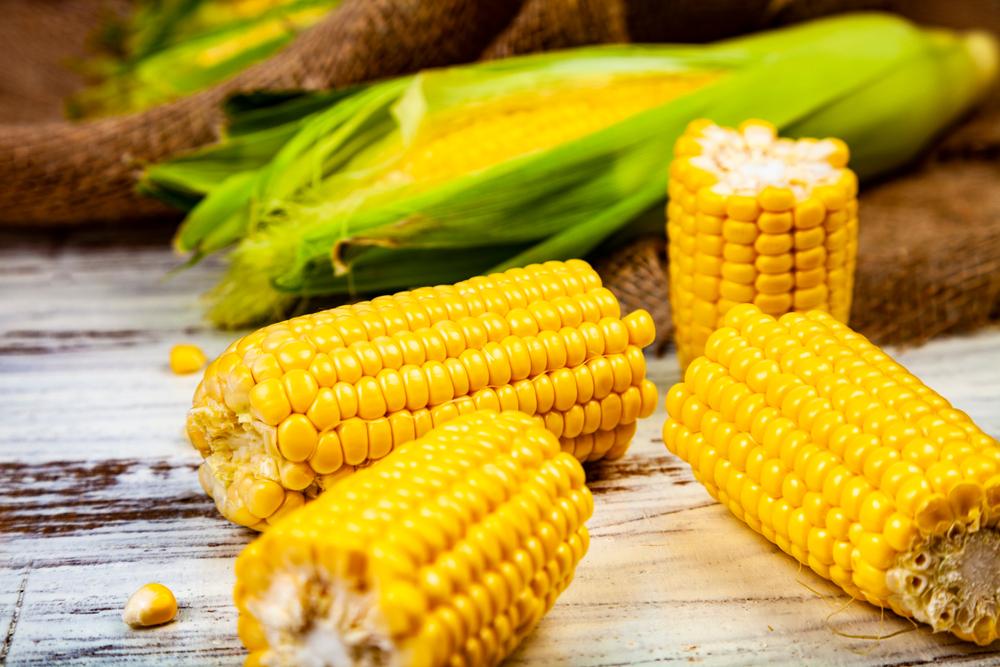 Как правильно варить кукурузу? (6556)   Povkusu.com