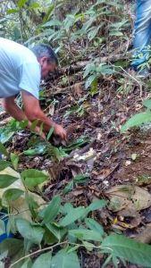 bio-agricultura-no-campo-com-gente