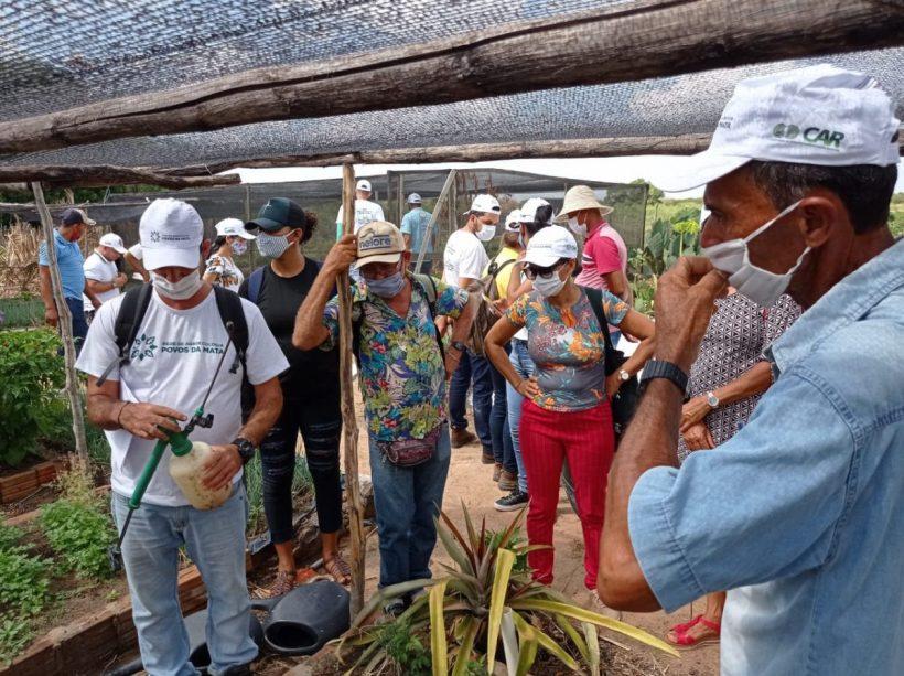 Associação Povos da Mata executa projeto de capacitação em certificação orgânica participativa com público do Pró Semiárido Baiano