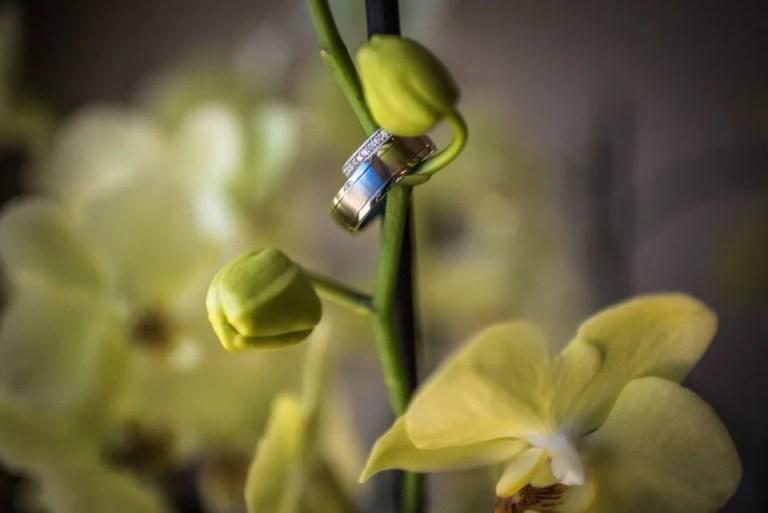 Cumberwell Park wedding rings