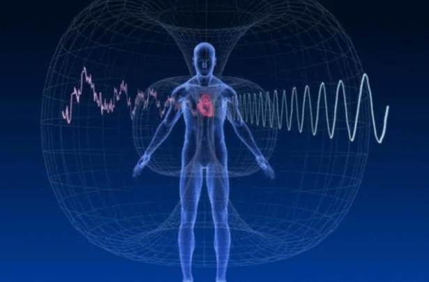 The Abundance Accelerator system