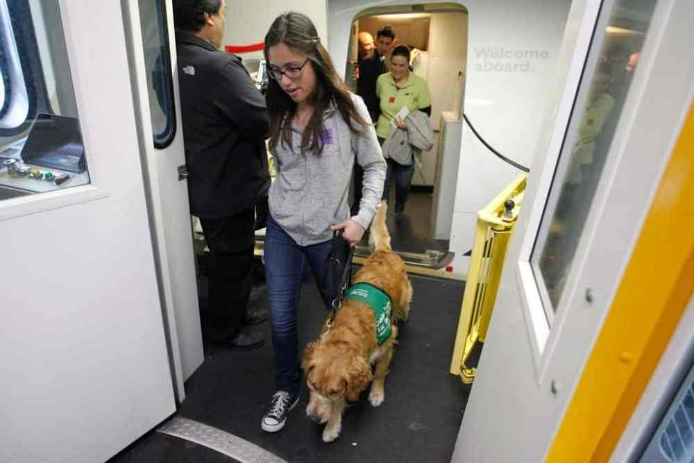 Alaska Airlines Announces Emotional Support Animal Ban