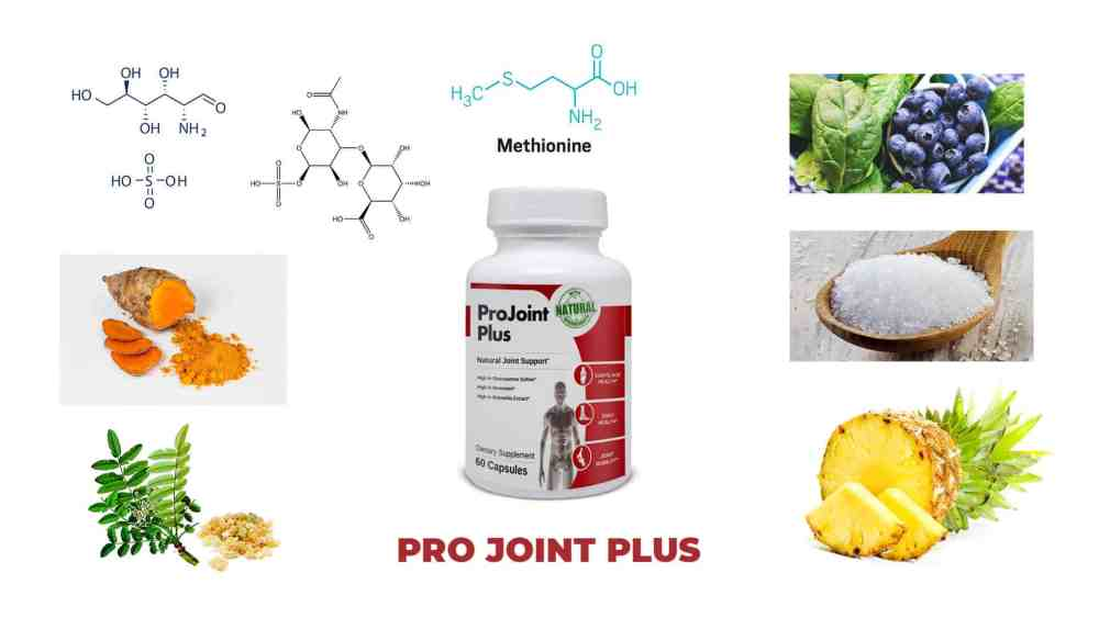 Ingredients-ProJoint Plus Supplement reviews