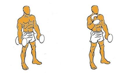 entrenar bíceps