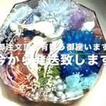 鳳凰 ケオン 幸運 金運 自己の成長 人間関係円滑 メモリーオイル入り コースター型 オルゴナイト 771 MICHIKO ORGONITE