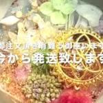 シードオブライフ 希望 ケオン 幸運 幸運 浄化 人間関係 霊障 お守り 幸運メモリーオイル入り コースター型 オルゴナイト 784 MICHIKO ORGONITE