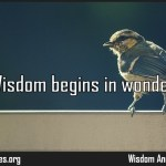 Wisdom begins in wonder Quote by Socrates