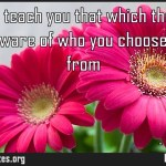 No one can teach you that which they have not done Beware of who you choose