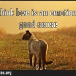 People think love is an emotion Love is good sense