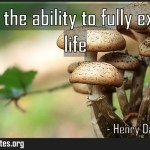 Wealth is the ability to fully experience life Meaning