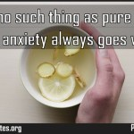 There is no such thing as pure pleasure some anxiety always goes with it Meaning