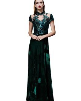 Velvet Evening Dress Illusion Sequin Mother's Dress Dark Green Stand Collar Short Sleeve A Line Floor Length Wedding Guest Dresses