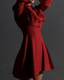 Long Sleeve Shirt Dress Pleated Swing Dress