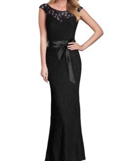 Elegant Sleeveless V Back Long Lace Dress