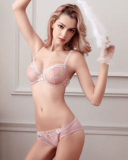 Sexy transparent lingerie lace embroidery thin bra set