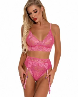 Bra And Panty Set Printed Lace Cut Out Two Piece Sexy Lingerie