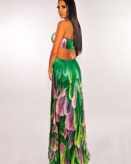 Stylish Holiday Printed Halter Maxi Dress