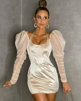 Fashion Long Puff Sleeve Sexy Lace Evening Runway Party Dresses